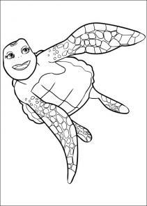Żółwik Sammy #3