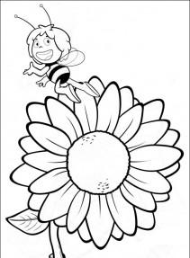 Pszczółka Maja #35